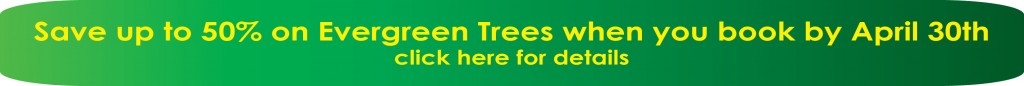 Spring Tree Sale Home Page Banner