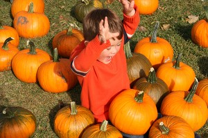 Pumpkin Days at Kayben Farms #kaybenfarms