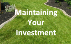 Maintaining Your Investment